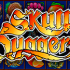 играть в автомат Skull Duggery