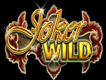 Играйте бесплатно в Дикий Джокер