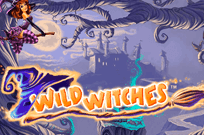 играть в автомат Wild Witches